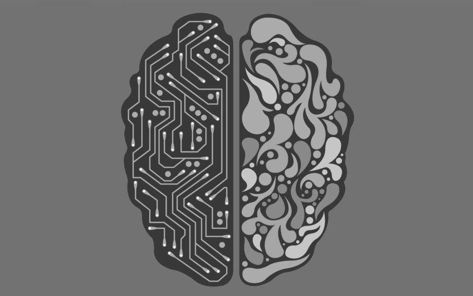 Les robots, le futur des hommes ?