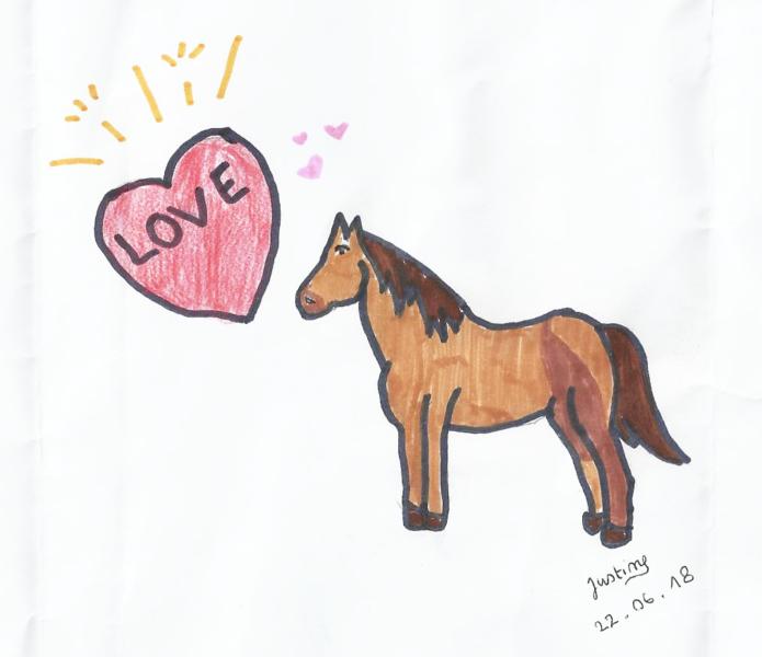 Les chevaux, un rêve d'évasion