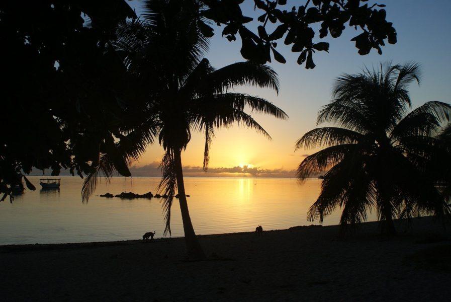 «Il y a quelque chose à Tahiti qu'il n'y a pas ici.»