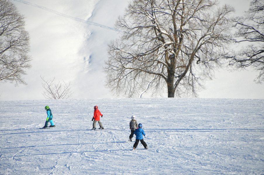 La classe de neige en Auvergne