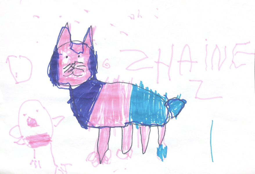 Cassis, le petit chat de Shainez